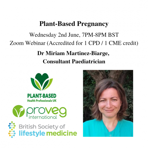 Plant Based Pregnancy