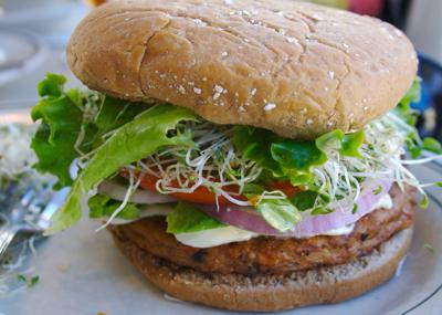 Processed plant-based meat alternatives: making an informed choice