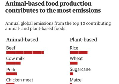 Review of the week's plant-based nutrition news 26th September 2021