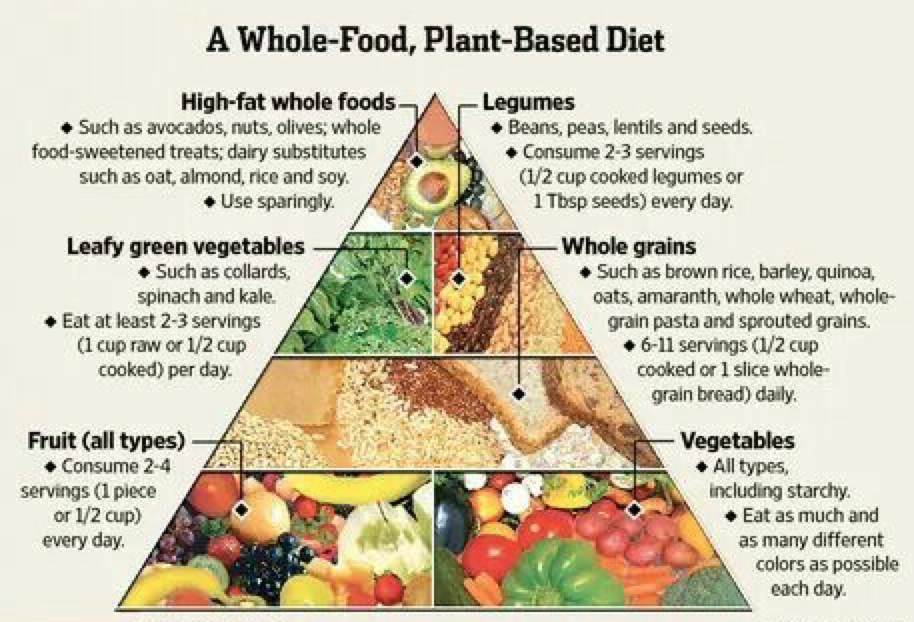 Plant-based diet index