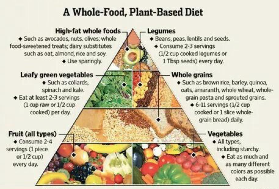Plant-based diet index