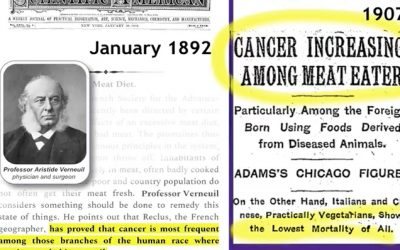 Cancer; ignoring nutrition at our peril