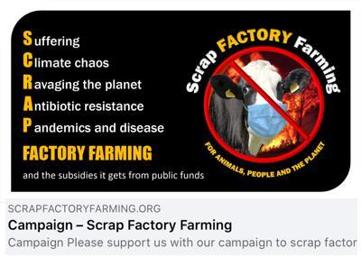 Scrap Factory Farming