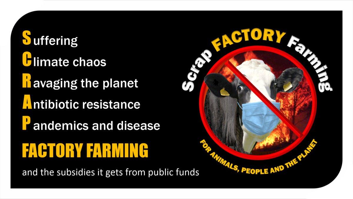 Campaign to scrap factory farming
