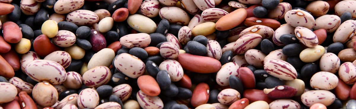 Soaking and Cooking Beans and Legumes