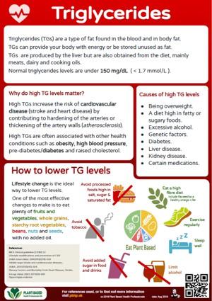 Plant based health factsheet - triglycerides